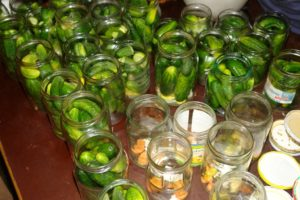 Foto von frisch eingelegten Gurken