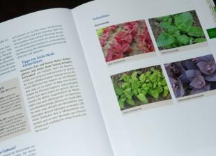 Foto eines Ausschnitts aus dem Handbuch Bio-Gemüse