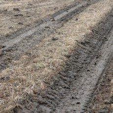 Die Vorteile der modernen Landwirtschaft