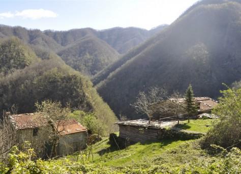 Foto einiger Gebäude im Projekt Castagnola