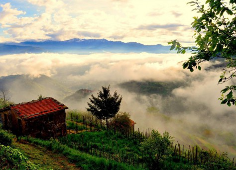 Foto einer wundervollen Gegend in der Toskana