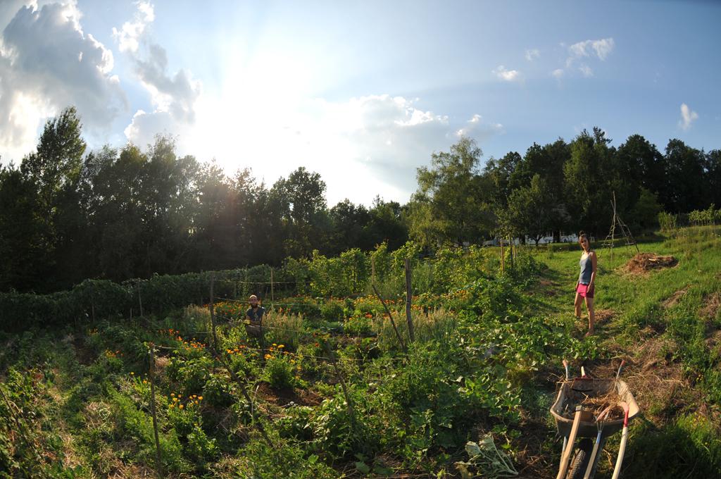 Dieses Foto zeigt Lisa und Michael in ihrem 200 Quadratmeter großen Gemüsegarten.