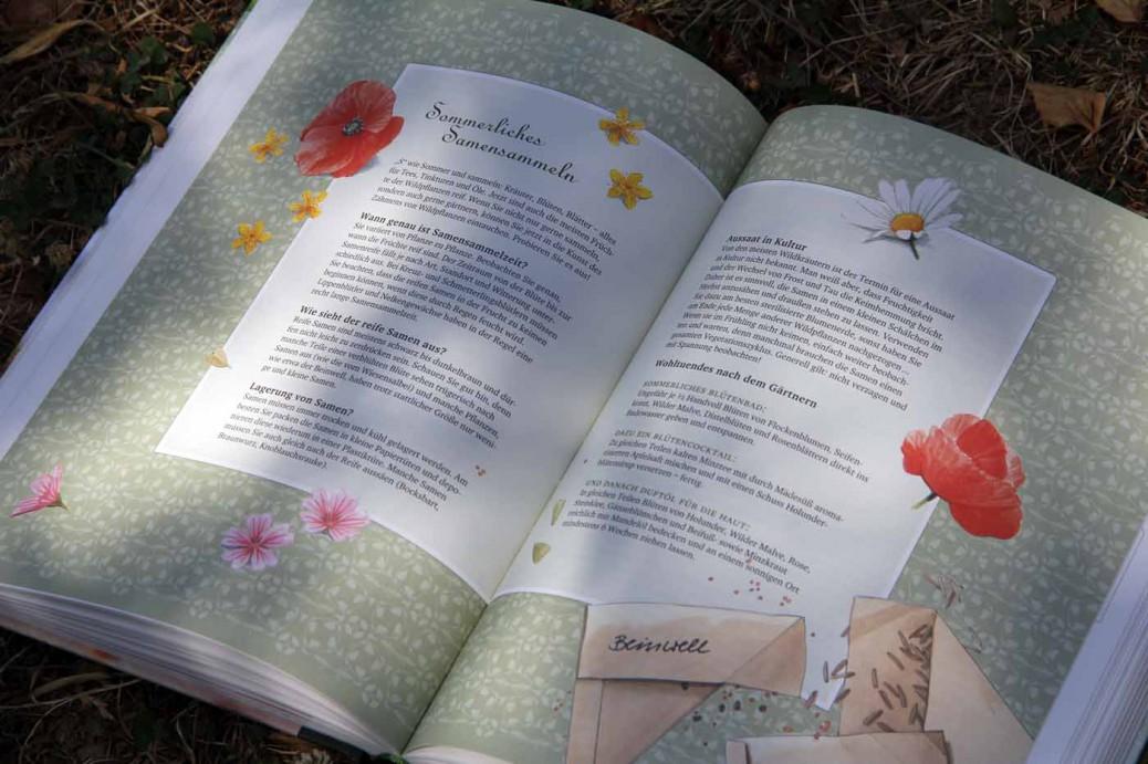 Wildkräuterbuch-alles-aus Wildpflanzen-Experiment-Selbstversorgung