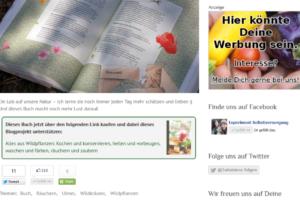 Screenshot von Werbung, Affiliate-Links und einem Flattr-Button auf diesem Blog