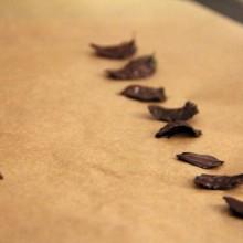 Foto von Minzeblättern in Schoko getaucht.