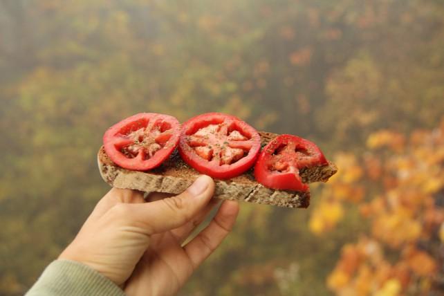 Foto von einem Tomatenbrot