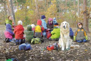 """Bild einer Filmszene aus """"alphabet"""": Kinder des Waldkindergartens Waldfexxx in Krems sitzen im Wald und spielen."""