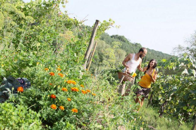 Foto von Lisa und Michael in ihrem Garten