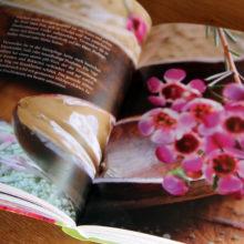 """Foto vom Buch """"Grüne Kosmetik"""""""