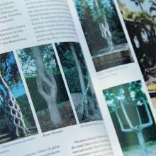 Foto von sehr interessant gewachsenen Bäumen aus einem Buch