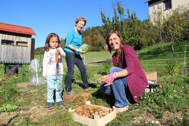 Gartlerinnen bei der Gemüseernte im Bio Gemeinschaftsgarten