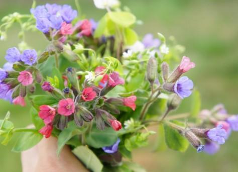 Foto von essbarem Blumenstrauß