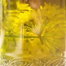 Süchtig! Bärlauchblütenpesto & Brennnesselpesto 5