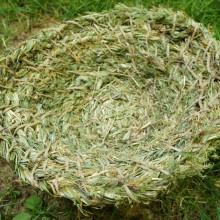 Foto von Korb aus Gras