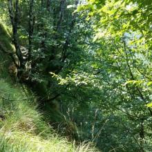 Foto eines Steilhanges am Rande der Castagnola