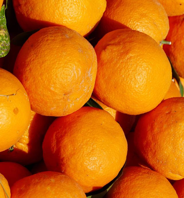 Foto von Orangen