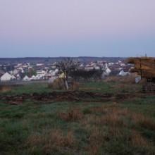 Wiesen vor Mörbisch am Neusiedlersee in der Morgendämmerung