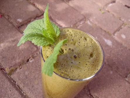 Wildkäuter - Smoothie aus Brennesseln udn Zitronenmelisse