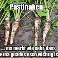 Meme mit dem im Dialekt geschriebenen Text: Pastinaken... man merkt wie sehr dass ihnen gutes Essen wichtig ist.