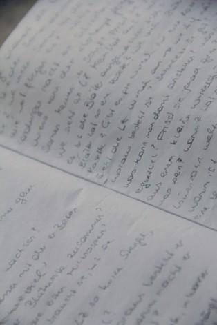 Ein Blatt Papier mit Fragen rund um den Löwenzahn