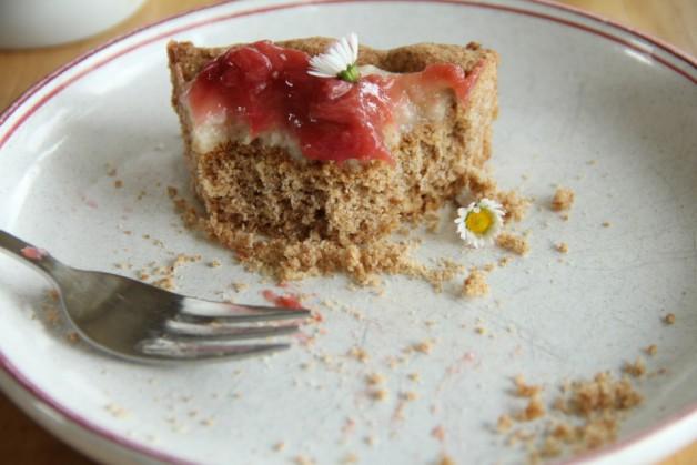 Foto vom veganen Anarcho-Rhabarber-Kuchen 6