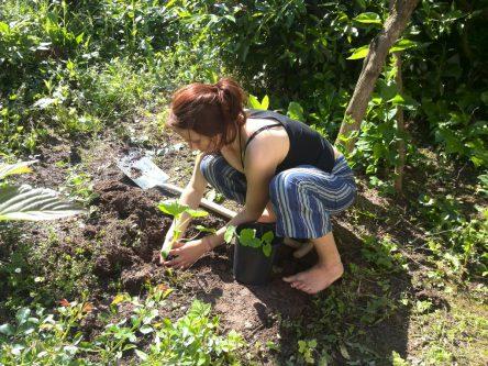 Pia pflanzt Krübisse im Vorgarten aus