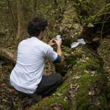 Foto eines Aktivisten der NaturPutzer Aktion von Global 2000 und Alpenverein, der mit seiner Smartphone-App Müll in der Natur fotografiert.