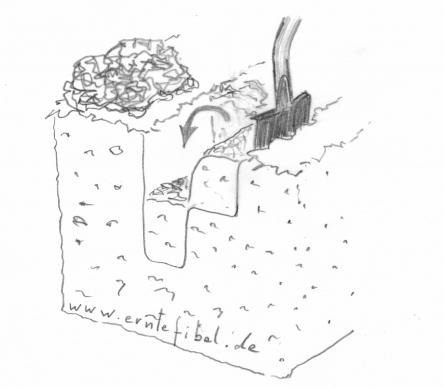 Umgraben im Tiefkulturbeet