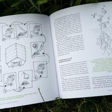 Fruchtfolge - Foto aus dem Buch Bio-Gemüse erfolgreich direktvermarkten von Jean-Martin Fortier