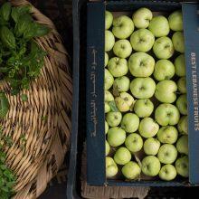 Foto von zwei Kisten geernteter Äpfel und einem Weidenkorb mit geernteten Kräutern