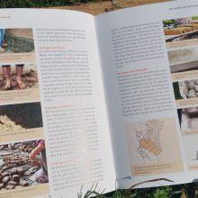 Foto eines Buches: Seiten mit Fotos übers Lehmofen bauen