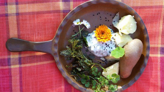 Teller mit Wildkräutern und Kartoffeln