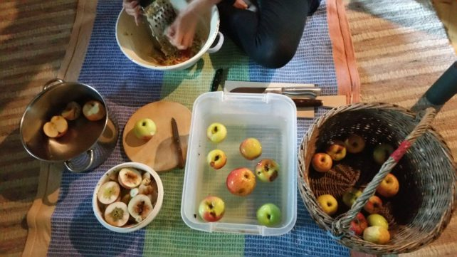 Foto von Äpfeln im Korb, beim Waschen in einer Plastikwanne, auf dem Schneidbrett und beim Reiben